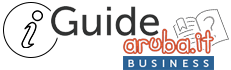 Guide Aruba Business